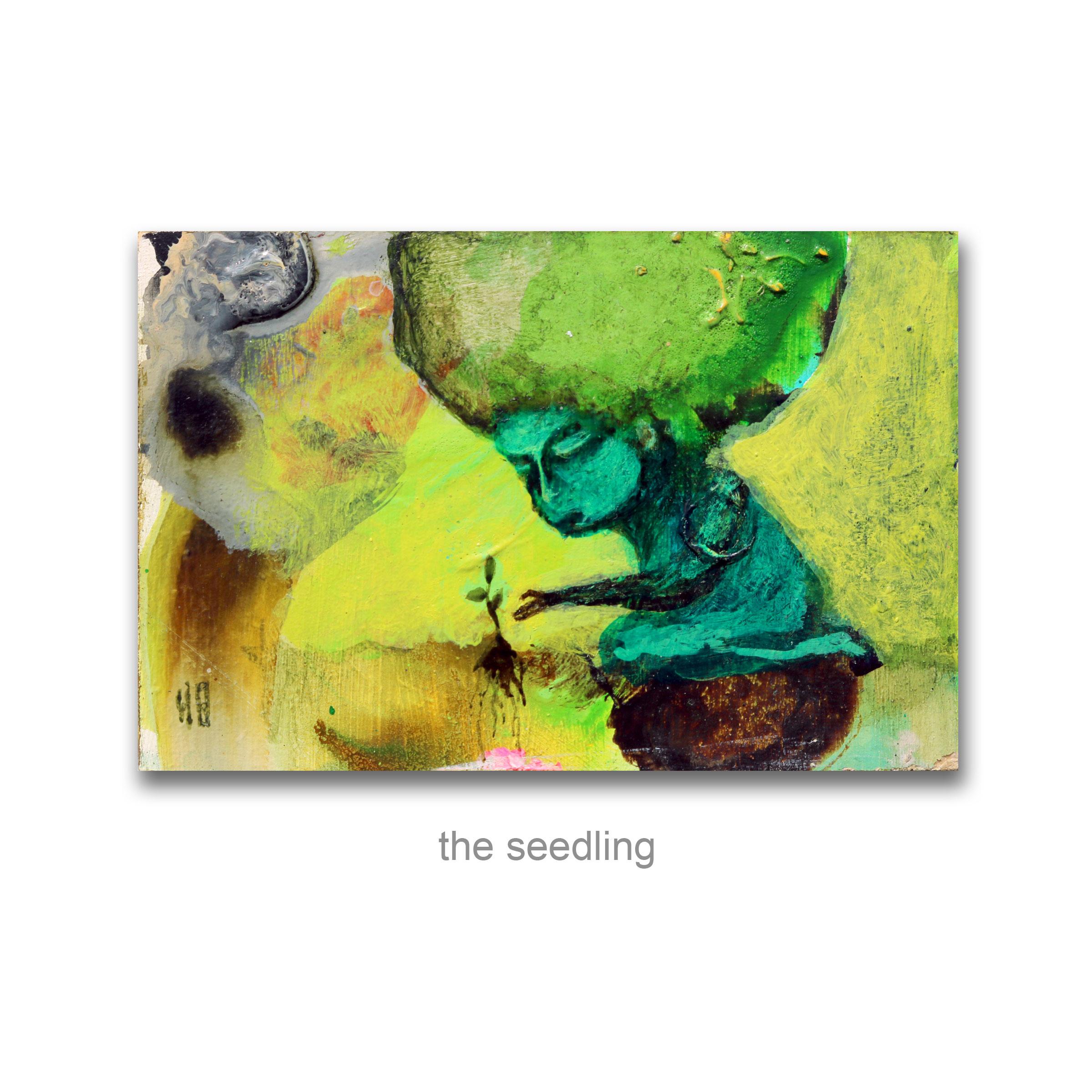 the-seedling